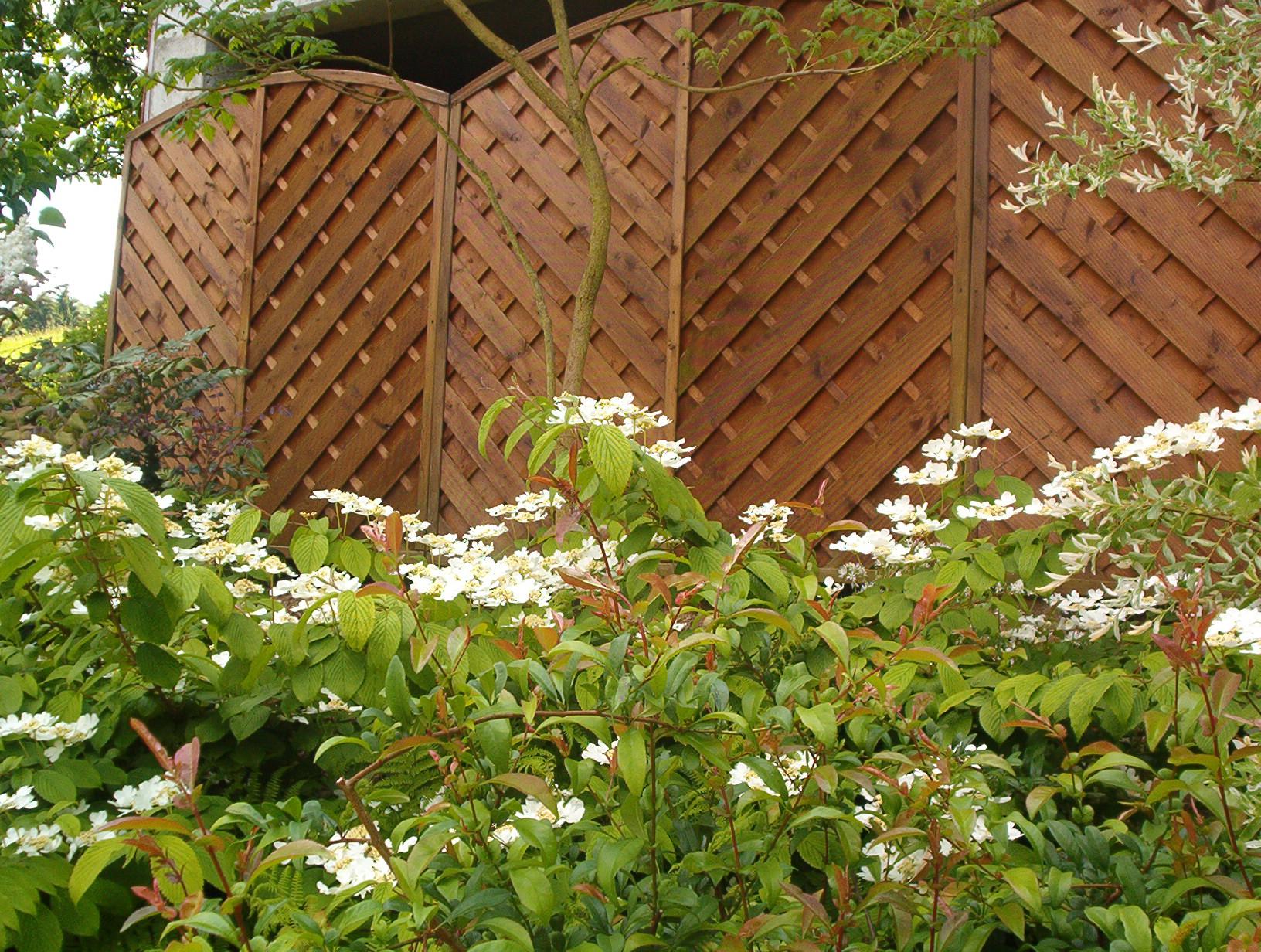 Fuchs Im Garten Was Tun ~ Innenräume und Möbel Ideen